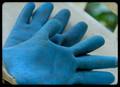 Gardening gloves, size extra large.