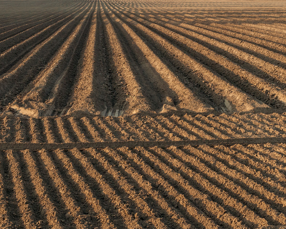 Dirt never looked so good. Long shadows cast by the setting sun create patterns in the dirt.