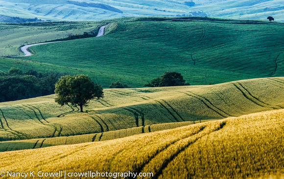 Rolling hills of Tuscany.