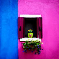 Burano window 1