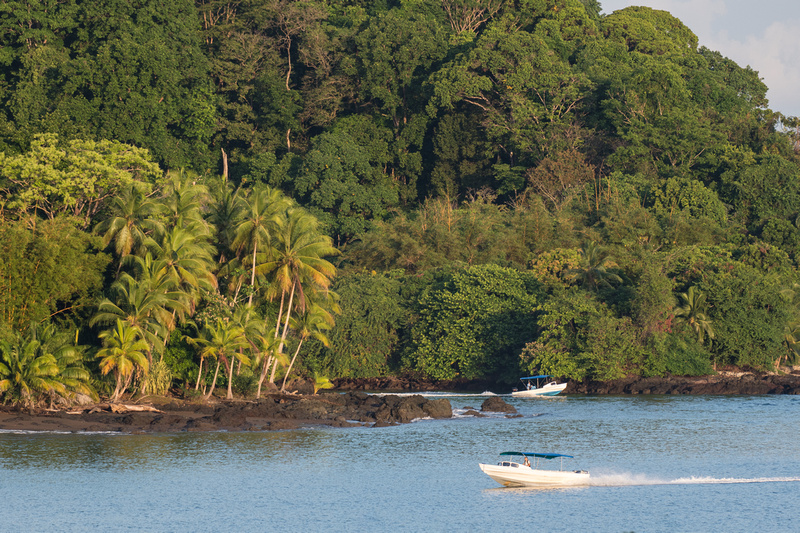 Tropical rainforest up to the edge of the water with two boats in the foreground.